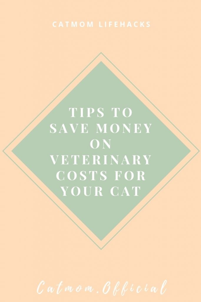 best tips to save money on your vet costs budgettips catonabudget catmom