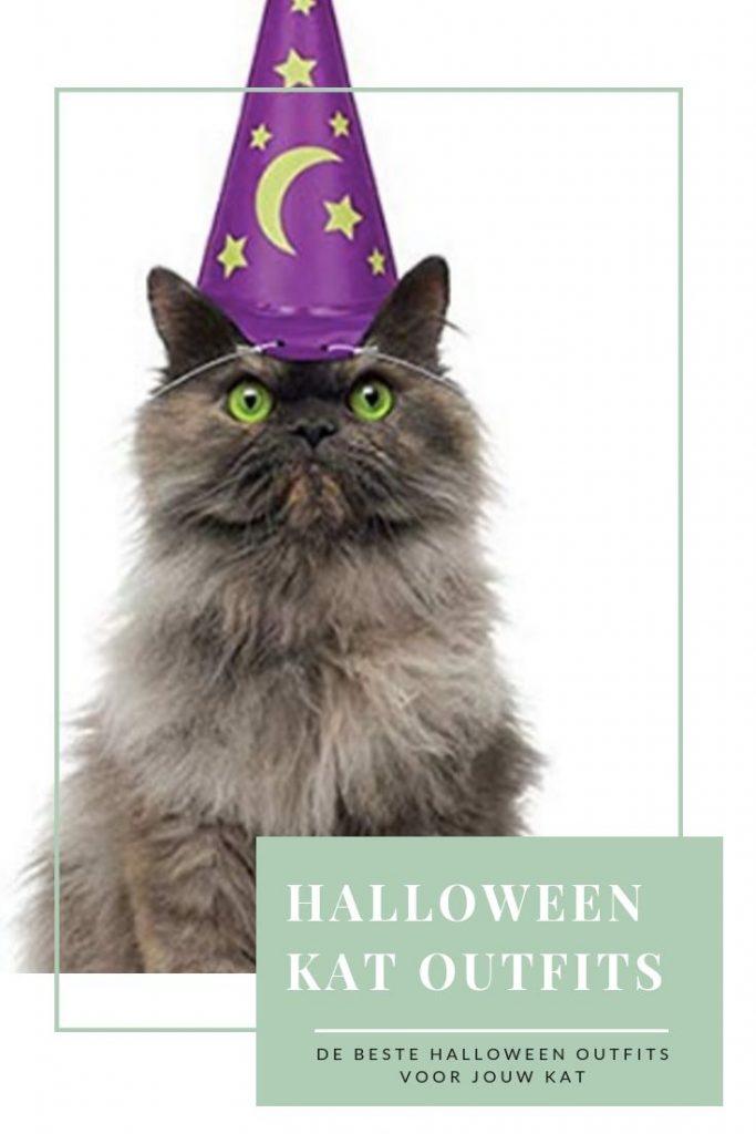 De leukste halloween outfits voor jouw kat, catmom.nl