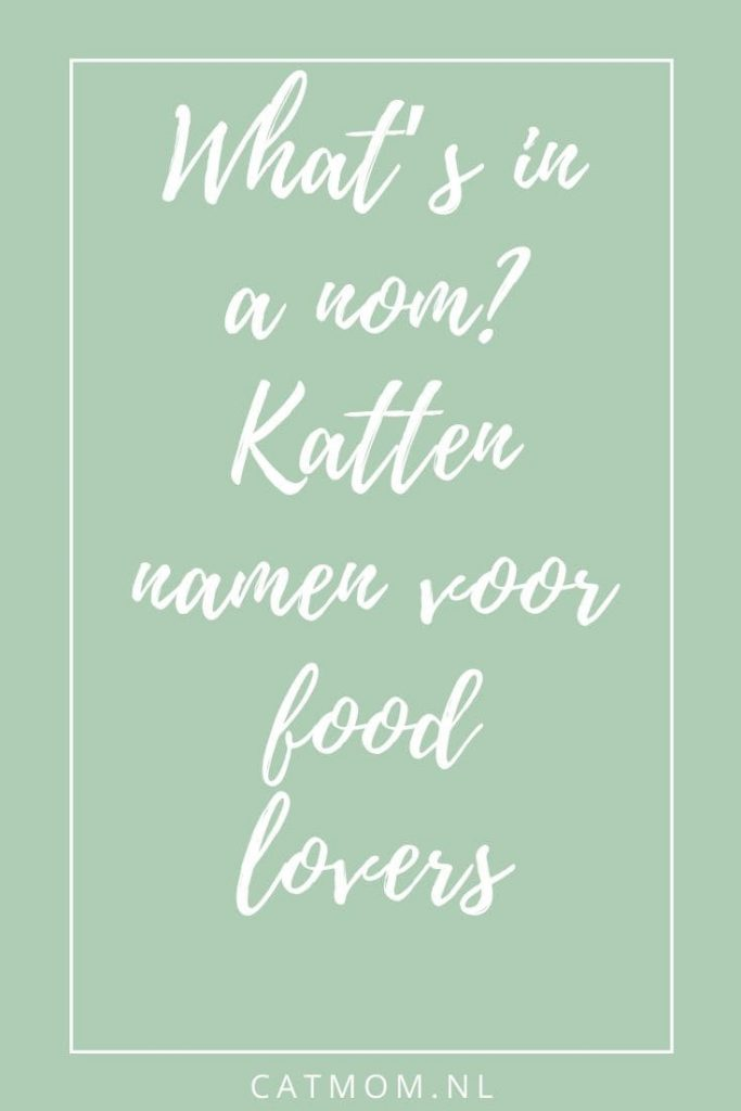 What's in a nom Katten namen voor food lovers