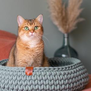 Kattenhuisjes | Mandjes