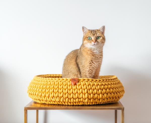 Mooie handgemaakte beige katten mand. Gehaakt van extra stevig garen, dit garen heeft een kern van polyester en is gemaakt van gerecycled katoen. Daardoor is de mand super stevig maar ook fijn zacht om op te slapen. Deze hippe kattenmand is een echte eyecatcher in jouw interieur. (En is ook nog verkrijgbaar in hippe kleuren blush, teracotta, donkerblauw, okergeel, avocado en grijsgroen). De Sunny basket is verkrijgbaar in verschillende maten: S 32 | 34 cm doorsnede en ongeveer 12 cm hoog €59,95 M 36 | 38 cm doorsnede en ongeveer 12 cm hoog €69,95 L 43 | 45 cm doorsnede en ongeveer 12 cm hoog €79,95 XL 52 | 54 cm doorsnede en ongeveer 12 cm hoog €94,95 Omdat deze manden op bestelling, met de hand gemaakt worden is de levertijd 1 tot 2 weken. Zodra jouw mand klaar is wordt deze direct verzonden en ontvang je een track&trace code in je mailbox. Lees hier welke maat je het beste kan bestellen afhankelijk van de grootte van jouw kat.