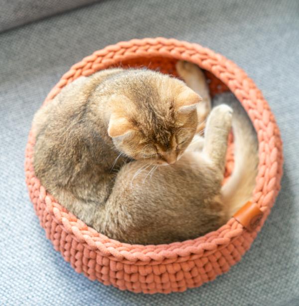 teracotta mand sunny baskets kattenmand kopen poezenmand bestellen kattenwebshop catmom.nl
