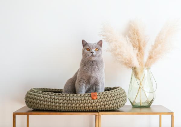 ovalen kattenmand kopen ovalen poezenmand bestellen sunny baskets ovalen poezen mand kattenwebshop catmom.nl sunny baskets kleuren