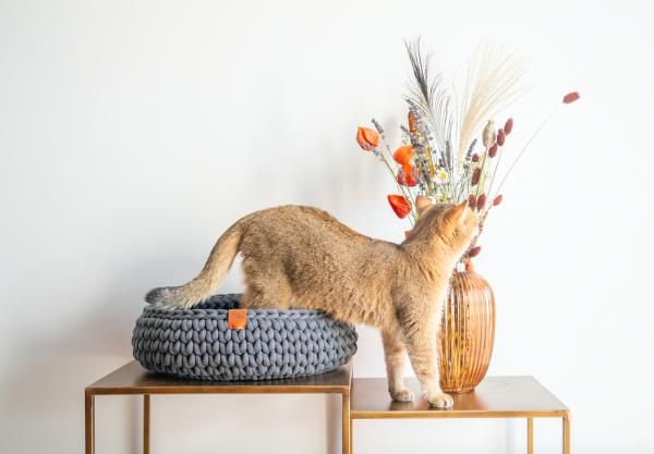 sunny baskets handgemaakte gehaakte wollen katoenen kattenmand donkergrijs charcoal kleur catmom.nl kattenwebshop